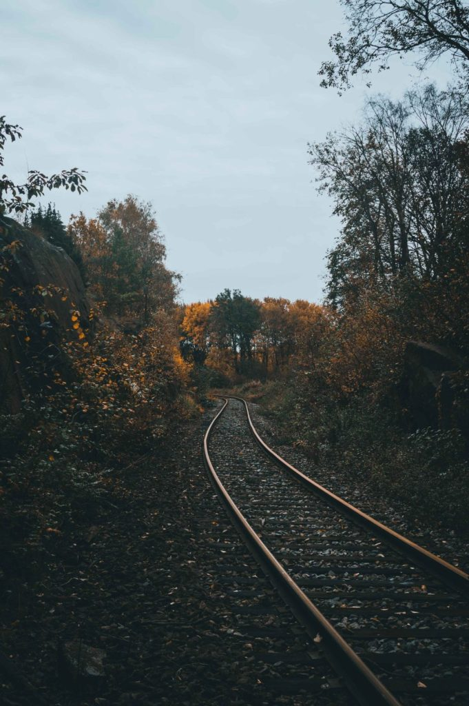 train, tracks, train tracks, journey, travel, forest, trees, outdoors, path