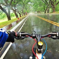 Weekly Photo Challenge: Infinite|UP Diliman