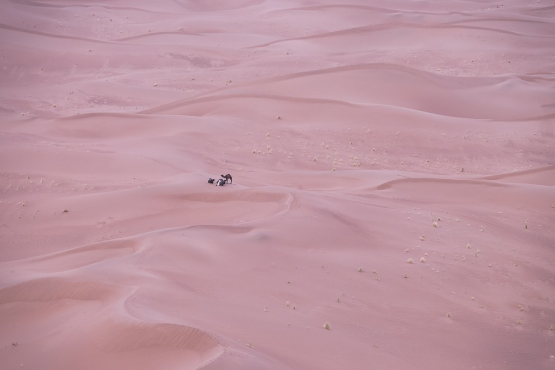 wild-morocco-saara-desert-life-by-lufe-nomad-nomades-marrocos-5