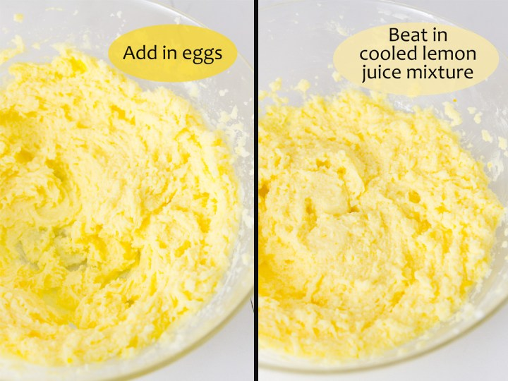 process shots for making lemon cookies