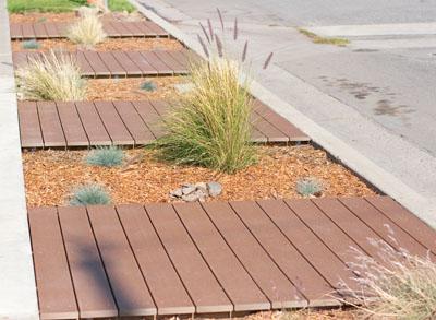 frontyard parkway xeriscaping (drought tolerant) complete Xeriscaping... Parkway complete