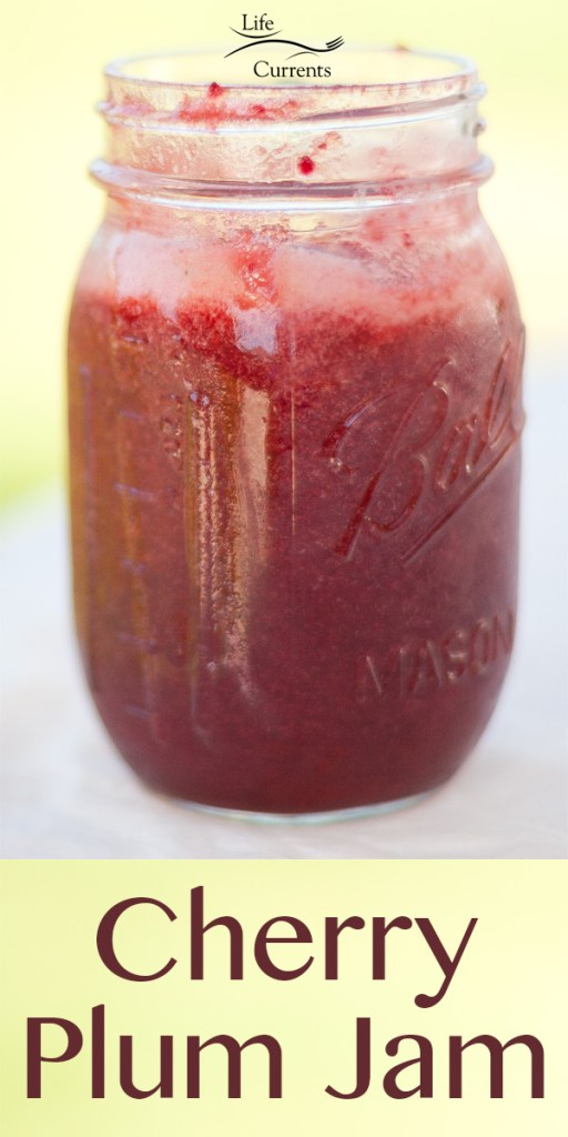 Preserving Summer with Cherry Plum Jam