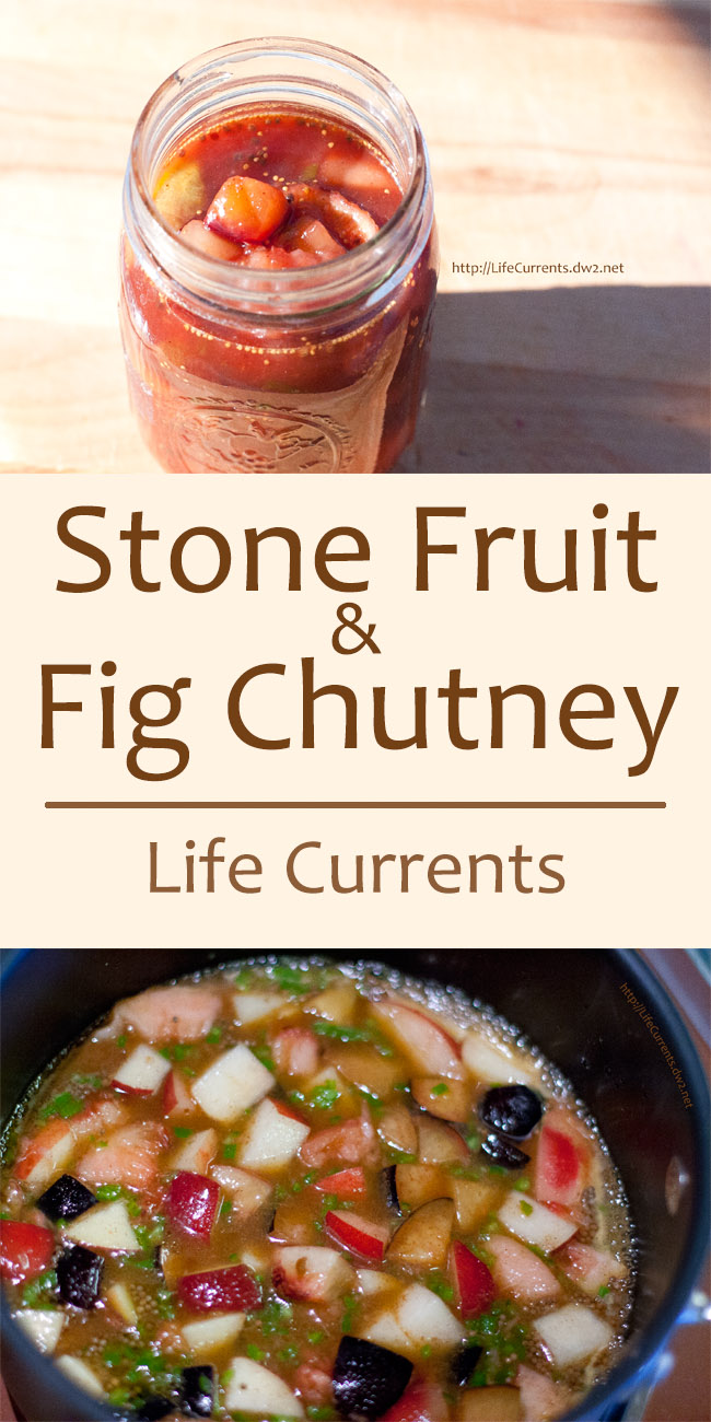 Stone Fruit and Fig Chutney -- Sweet and savory ... yummy! the perfect condiment for just about everything. Eat it on crackers, rice, anything!