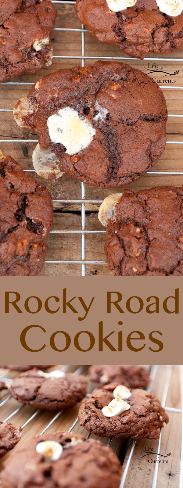 Rocky Road Cookies chocolaty good cookies packed with marshmallows and pecans. The classic flavor combination in a cookie!