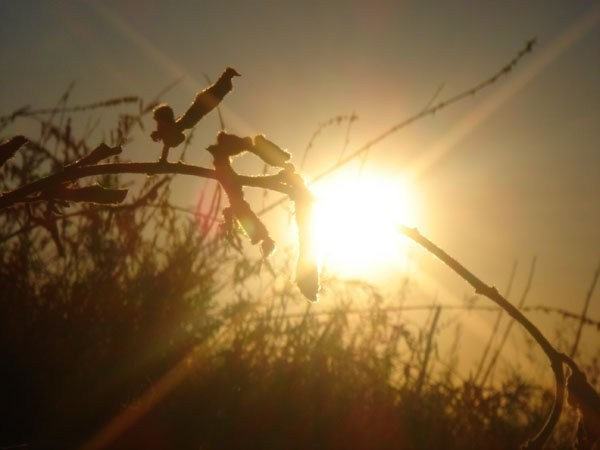 wordless Wednesday Limestone Canyon Hike sunset