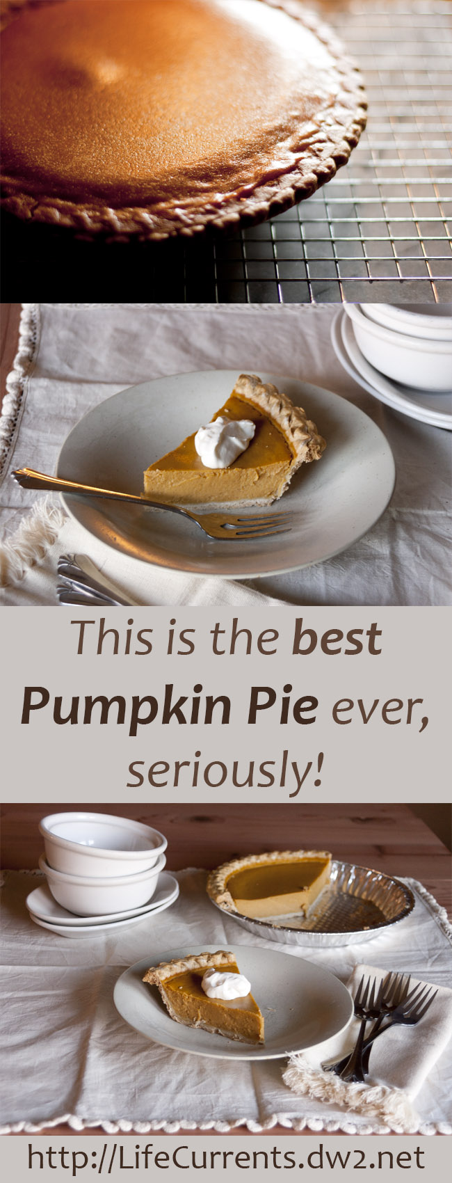 This is the best Pumpkin Pie ever, seriously! Make your own this Thanksgiving and Christmas, you'll be happy you did!