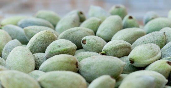 Green Almonds fuzzy green almonds, just slightly underripe