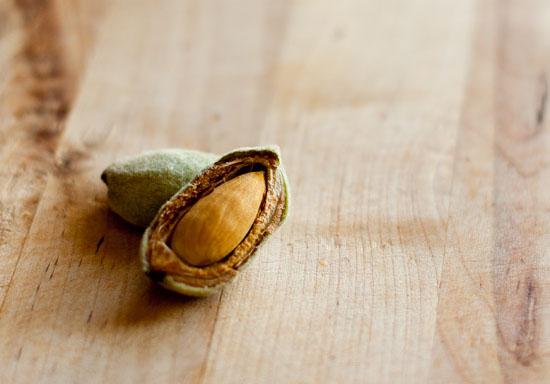 cracked open almond