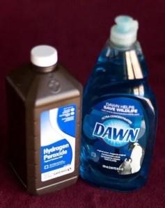 hydrogen peroxide and dawn