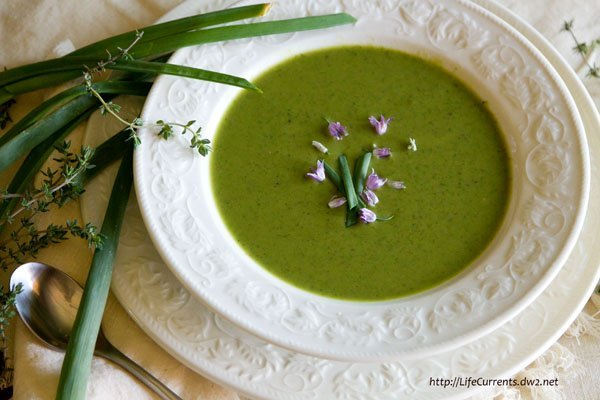 Broccoli and Pea Potage with Thyme lentils soup healthy cleanse recipe https://lifecurrentsblog.com