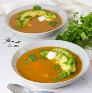 square crop of Mexican vegetarian soup garnished with avocado, sour cream, and cilantro.