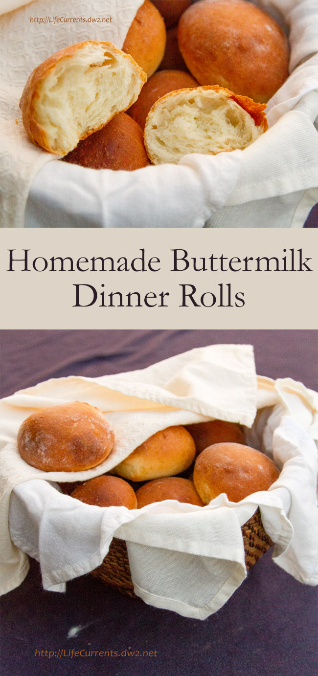 Buttermilk Dinner Rolls bread homemade crusty on the outside and soft and tender on the inside. Perfect with dinner! or as a snack