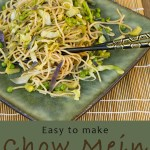 chow Mein Noodles or yakisoba noodles Asian noodles on a green plate with chop sticks