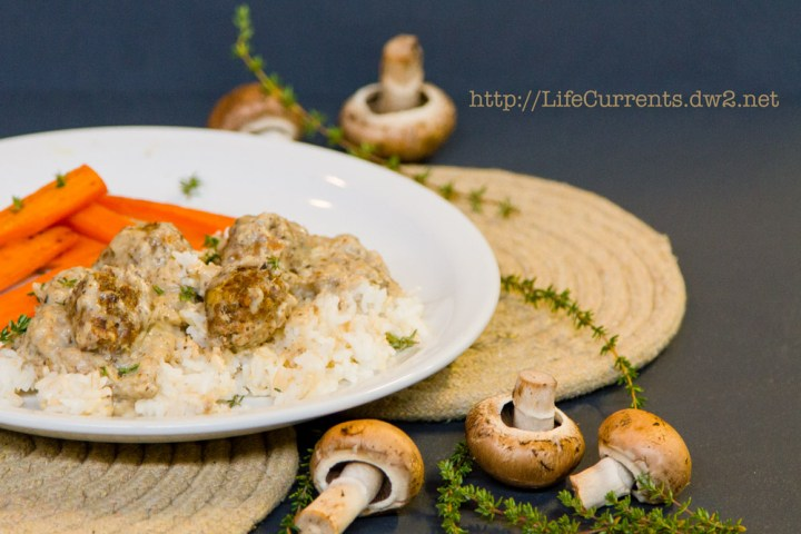 Little Meat Patties and Rice | Life Currents