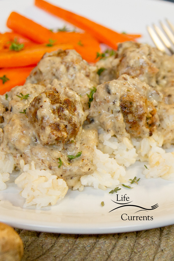 Little Meat Patties and Rice - vegetarian & healthy version