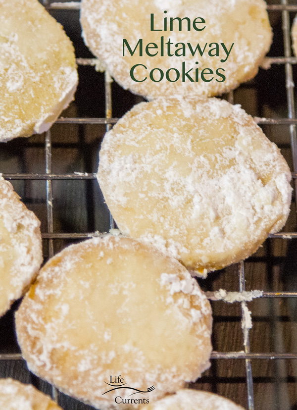 Lime Meltaway Cookies are perfect for a cookie exchange