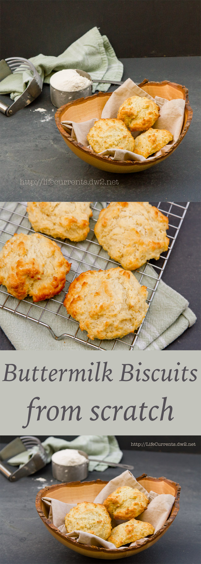 Fresh Buttermilk Biscuits from scratch are a no fail delicious side to your dinner!