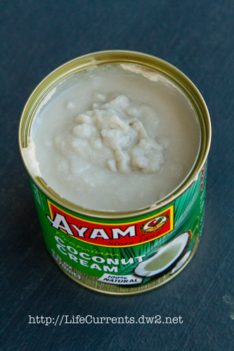 Canned Coconut Cream for Vegan Chocolate Pecan Ice Cream Recipe | Life Currents vegan gluten-free paleo grain free