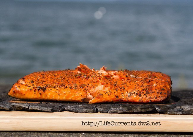 Cedar Plank Grilled Salmon https://lifecurrentsblog.com