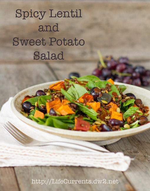 Spicy Lentil and Sweet Potato Salad with Chipotle Vinaigrette Dressing https://lifecurrentsblog.com