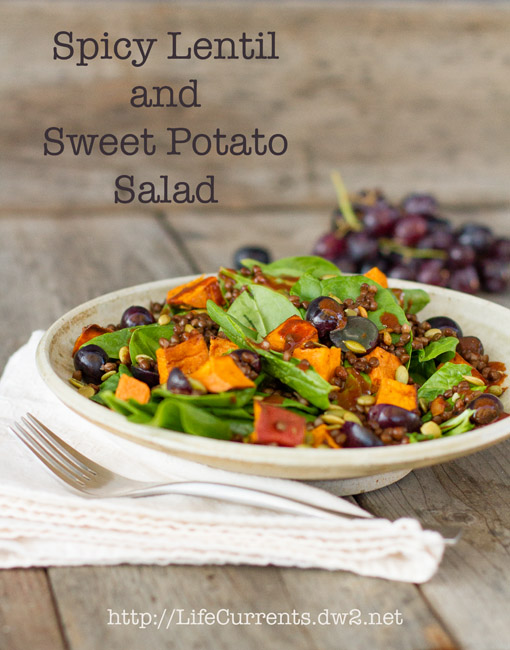 Chipotle Vinaigrette Dressing featured recipe Spicy Lentil and Sweet Potato Salad