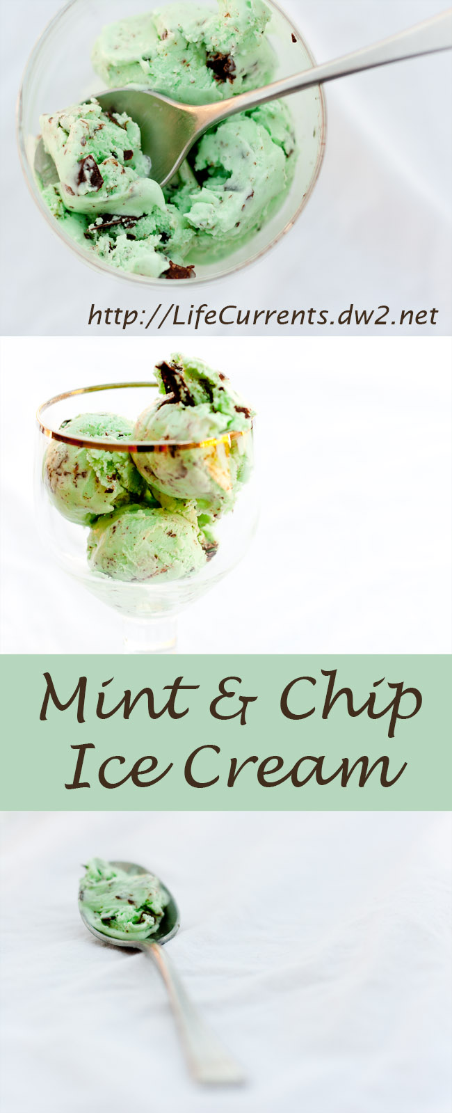 mint and chip ice cream Pin from Life Currents