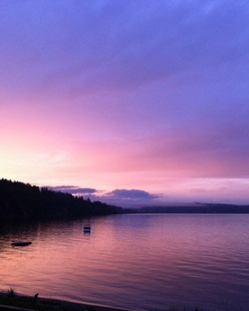 Whidbey Island Beauty & Things to do on Whidbey Island by Life Currents https://lifecurrentsblog.com