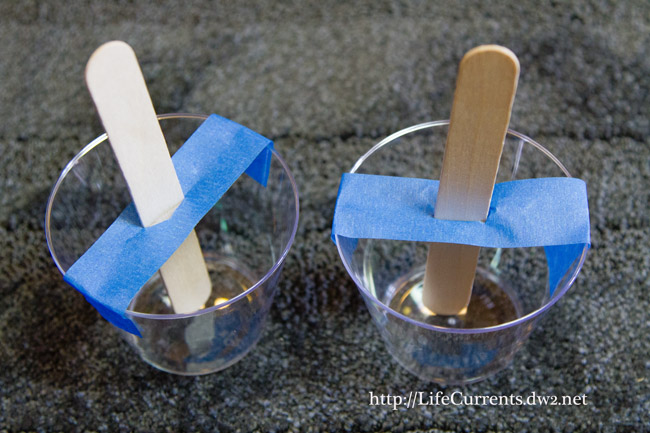 Double Cherry Popsicles are a fun and healthy way to cool off this summer! Come get 'em! By Life Currents https://lifecurrentsblog.com