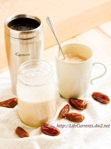 Coconut Milk Coffee Creamer is a rich creamy treat for your coffee that's dairy-free, vegan, Paleo-friendly, and super yummy! Treat yourself today! https://lifecurrentsblog.com