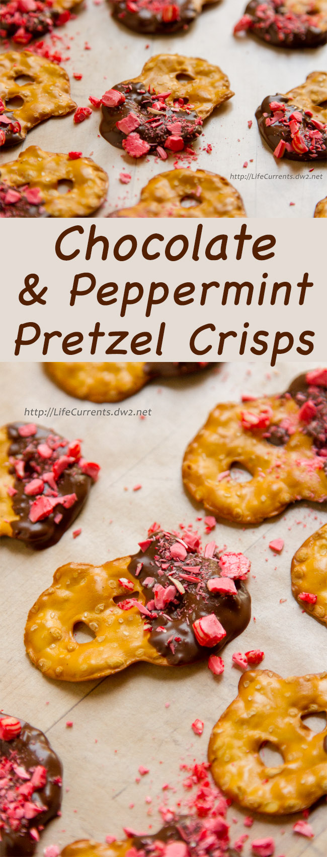 Chocolate and Peppermint Covered Pretzel Crisps
