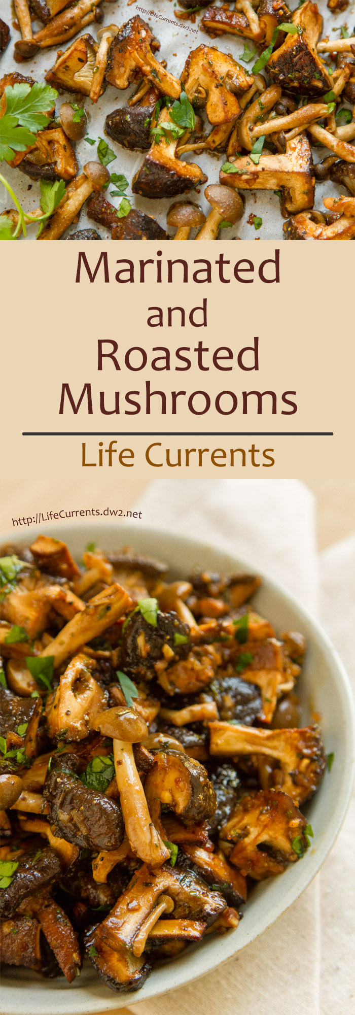 Marinated and Roasted Mushrooms are so easy to make and super delicious! Perfect for a holiday dinner! by Life Currents