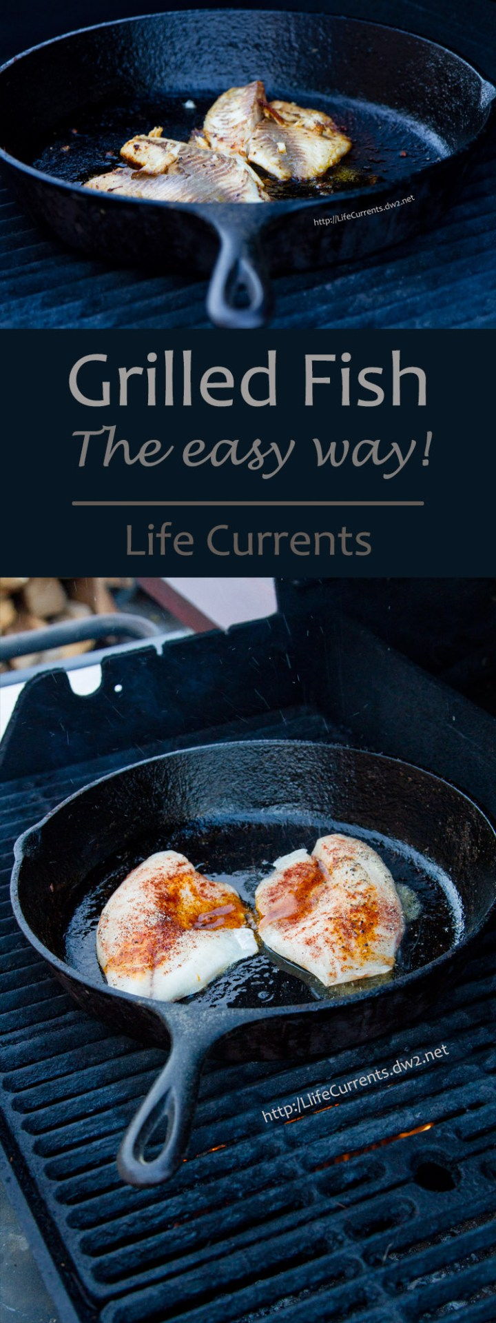 Grilled Fish done the easy way, on the grill right in the cast iron skillet! A great weeknight meal!