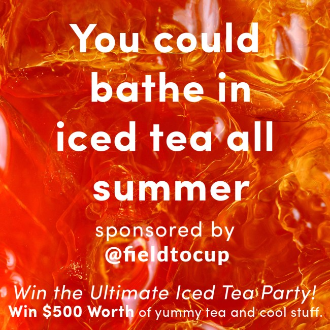 The Ultimate Iced Tea Party Giveaway from Life Currents and Field to Cup