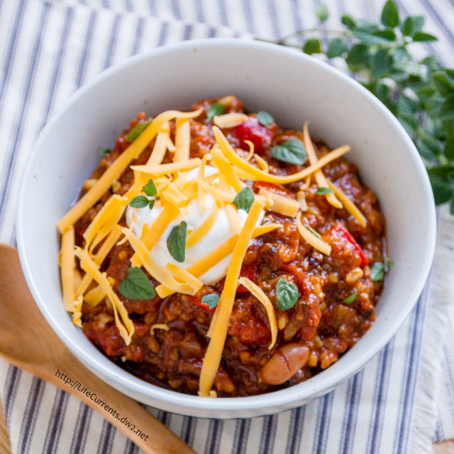 This Slow Cooker Mexican Bean and Brown Rice Stew is great comfort food. It warms you from the inside, and it smells terrific while it cooks in the crock pot. It's also fun to let your family garnish each bowl however the want – cheese, sour cream, crushed tortilla chips, fresh herbs, avocado, whatever suits your fancy.