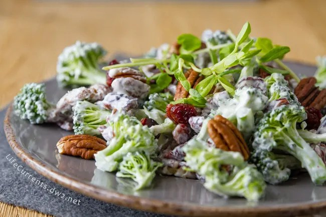 Cranberry Pecan Broccoli Salad