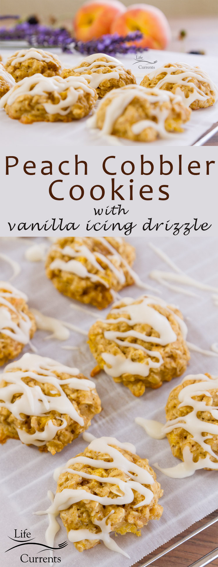 Soft peachy cookies filled with oatmeal goodness and drizzled with a light sweet vanilla icing. So good as a nice summer dessert or as a breakfast snack!