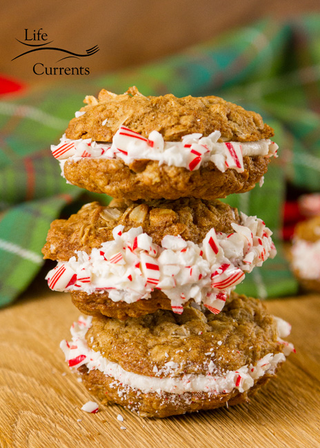 Peppermint Oatmeal Sandwich Cookies Recipe - a childhood classic, all dressed up for the holidays