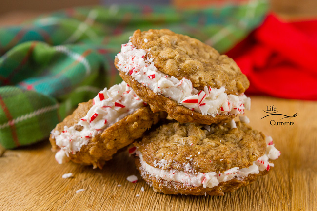 Peppermint Oatmeal Sandwich Cookies Recipe - winter delights of happiness