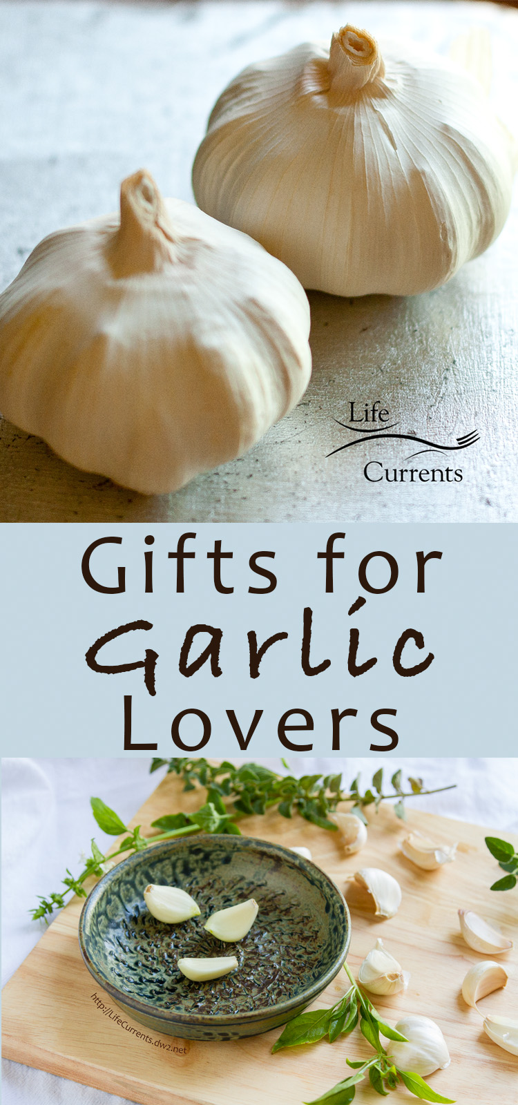 Gifts for Garlic Lovers - a gift guide for all things garlicy