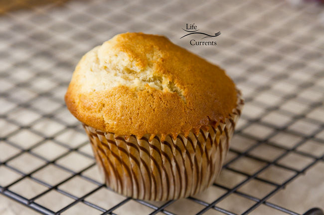 Lemon Glazed Sugar Muffins - the plain muffin with no glaze