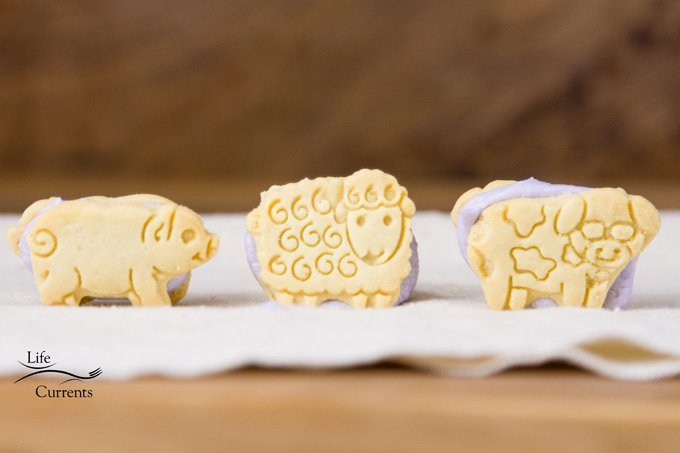 Animal Cracker Sandwich Cookies - Life Currents