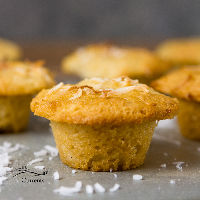 Gluten-Free Coconut Muffins are so good. Filled with coconut flavor. These little muffins of goodness are a coconut lovers dream!