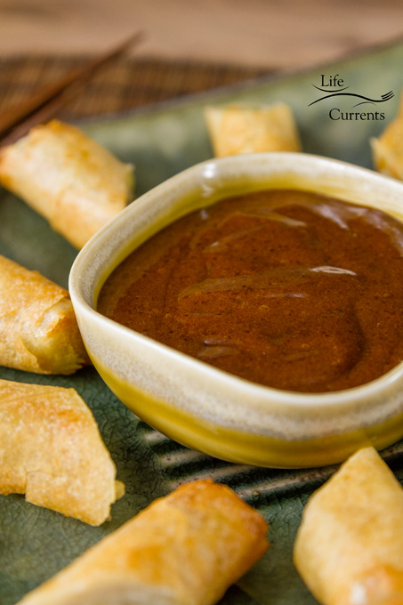 This Asian Plum Chili Dipping Sauce has a well-rounded flavor. It's sweet, but not overly sweet, with a nice spicy kick to it. served with eggrolls