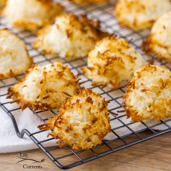 2 Ingredient Coconut Macaroons Recipe for true coconut lovers