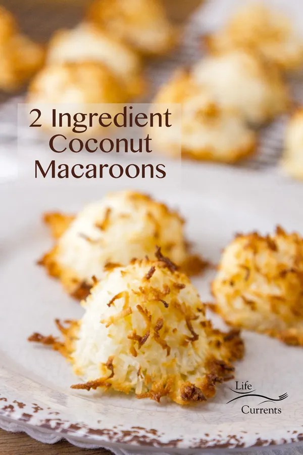 Peppermint Brownie Sandwich Cookies featured recipe for 2 Ingredient Coconut Macaroons
