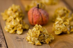 Pumpkin Spice Candy Bites no bake easy to make delicious