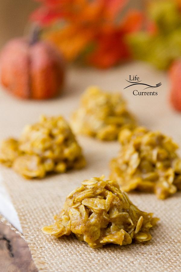 Pumpkin Spice Candy Bites