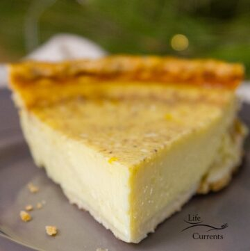 Eggnog Custard Pie - an eg based custard that's filled with festive eggnog to make you happy