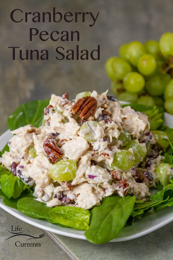 Most Popular Recipes of 2019: the year in review: Cranberry Pecan Tuna Salad