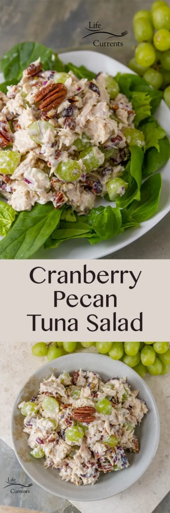 Cranberry Pecan Tuna Salad - This salad comes together quickly and is so delicious!  Island Trollers albacore tuna, tart and sweet dried cranberries, crunchy toasted pecans, fresh fruity grapes